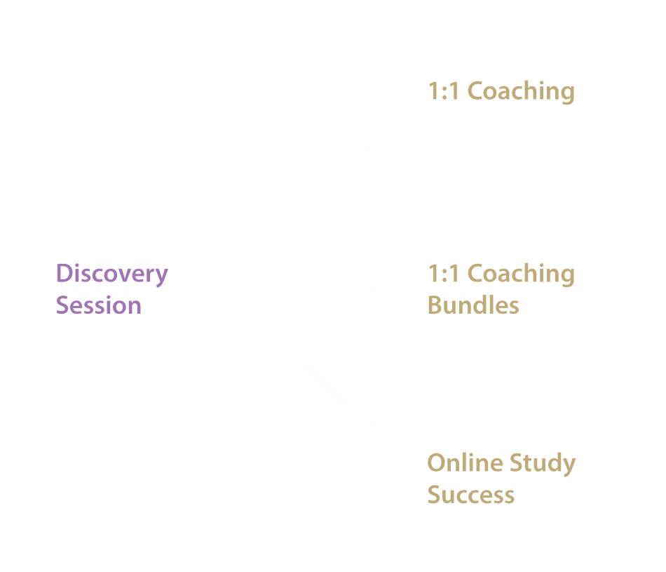 Revision Technique, Discovery Sessions with Connective Learning